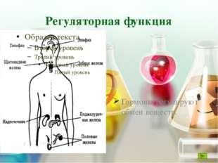 Гидролиз При гидролизе белков образуются аминокислоты. Денатурация При нагрев