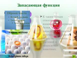 Вместо точек проставьте соответствующие функции белков Ускоряя химические реа