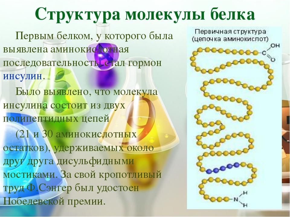 ПЕРВИЧНАЯ Структура Первичная структура белковой молекулы определяет свойства...