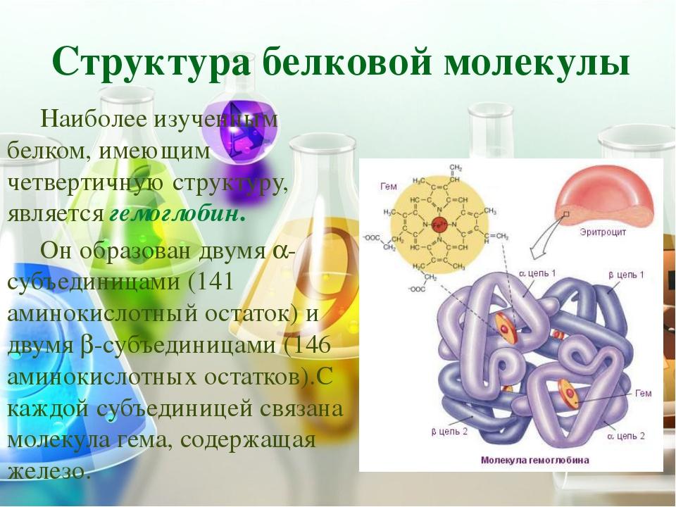 Белок Структурные Рецепторы Ферменты Запасающие Транспортные Двигательные Рег...