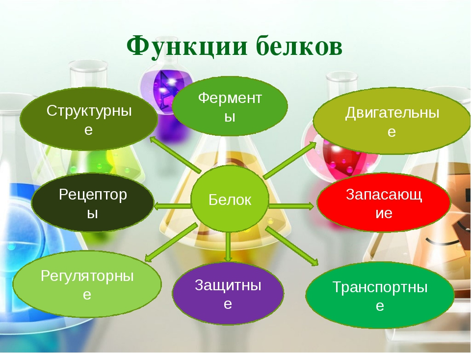 Транспортные белки Заключается в связывании и доставке (транспорте) различных...