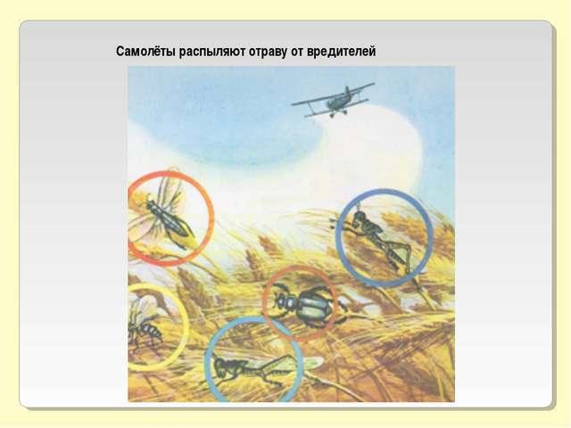 Самолёты распыляют отраву от вредителей