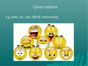 e.g. polite, fun, cute, difficult, hard-working Opinion adjective