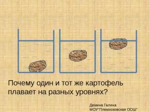 """Почему один и тот же картофель плавает на разных уровнях? Демина Галина МОУ"""""""