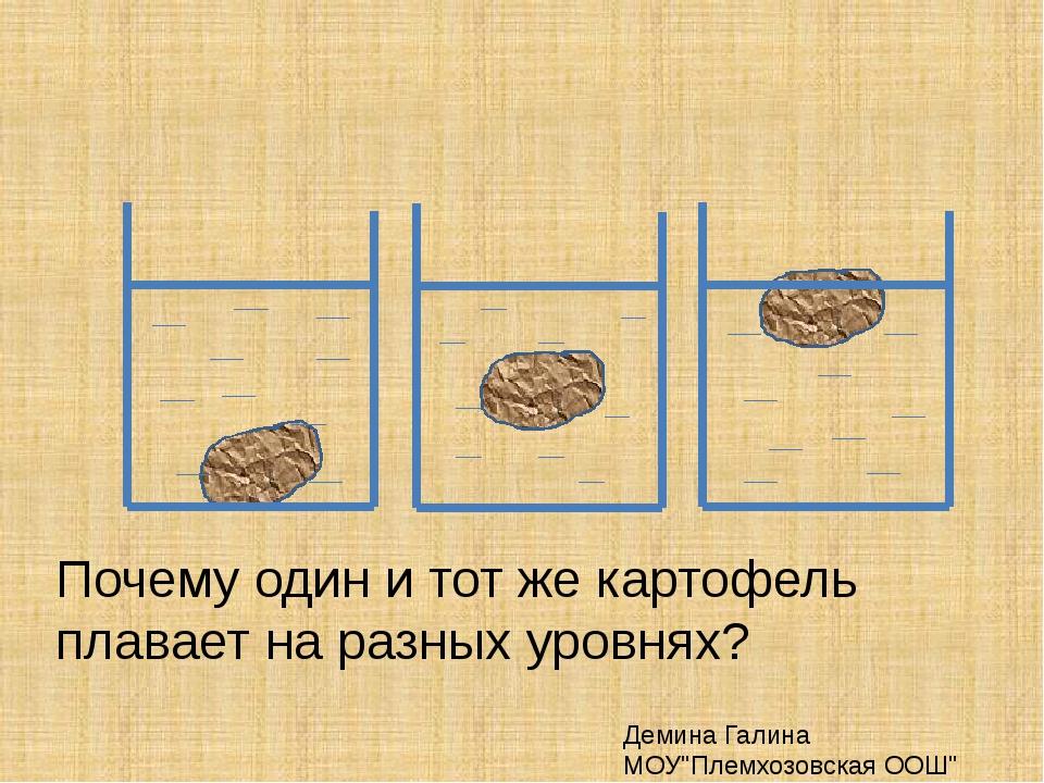 """Почему один и тот же картофель плавает на разных уровнях? Демина Галина МОУ""""..."""