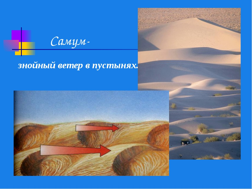 Самум- знойный ветер в пустынях.