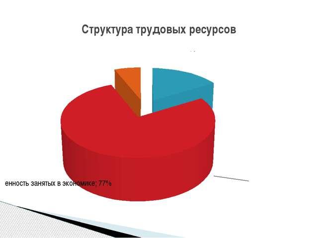 Структура трудовых ресурсов