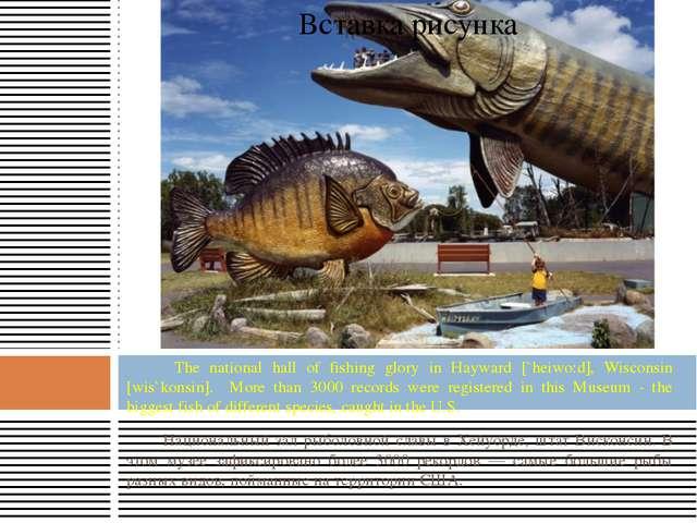 The national hall of fishing glory in Hayward [`heiwo:d], Wisconsin [wis`kon...