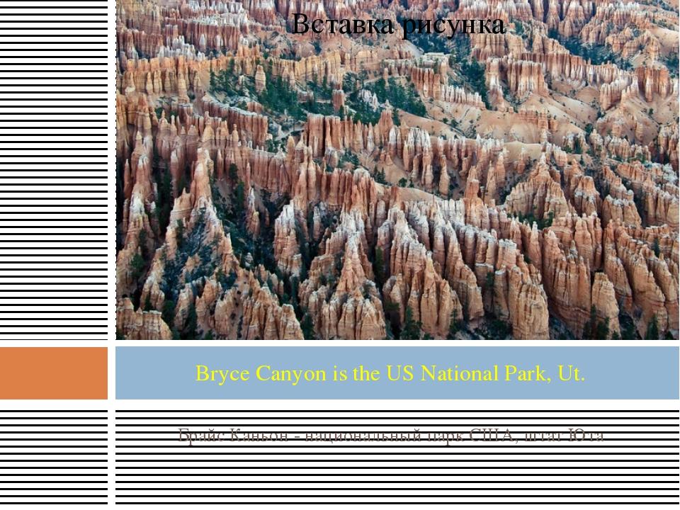 Брайс Каньон - национальный парк США, штат Юта Bryce Canyon is the US Nationa...