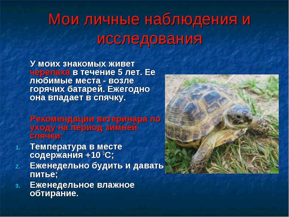 Мои личные наблюдения и исследования У моих знакомых живет черепаха в течение...
