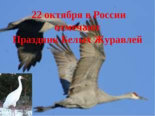 22 октября в России отмечают Праздник Белых Журавлей