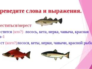 Переведите слова и выражения. Нереститься/нерест нерестится (кто?) лосось, ке