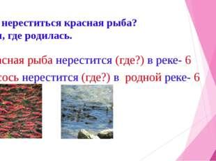 Где нереститься красная рыба? Там, где родилась. Красная рыба нерестится (где