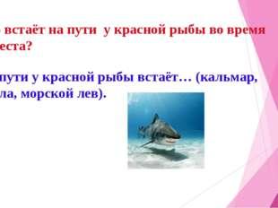 Кто встаёт на пути у красной рыбы во время нереста? На пути у красной рыбы вс