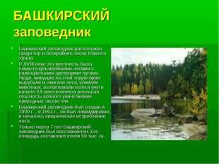 БАШКИРСКИЙ заповедник Башкирский заповедник расположен среди гор и бескрайних