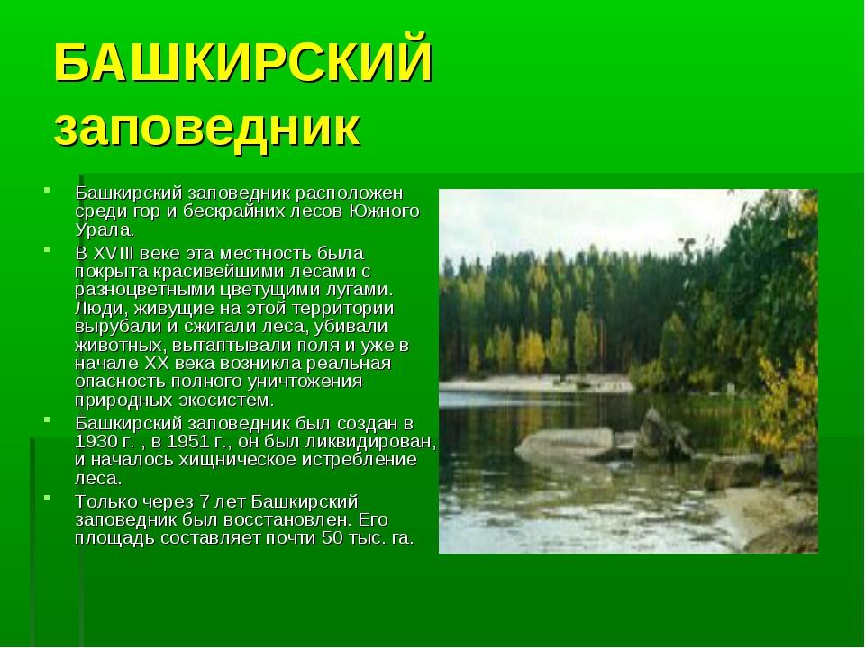 БАШКИРСКИЙ заповедник Башкирский заповедник расположен среди гор и бескрайних...
