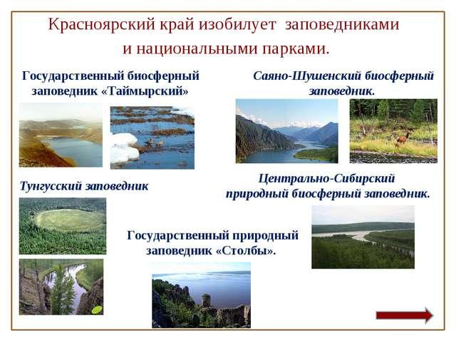 Красноярский край изобилует заповедниками инациональными парками. Государс...