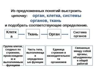 Задачи урока: Изучить строение организма человека. Изучить системы внутренних