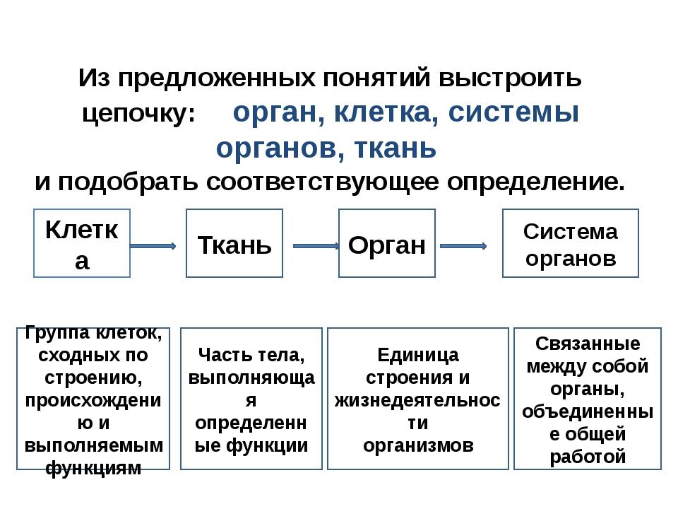 Задачи урока: Изучить строение организма человека. Изучить системы внутренних...