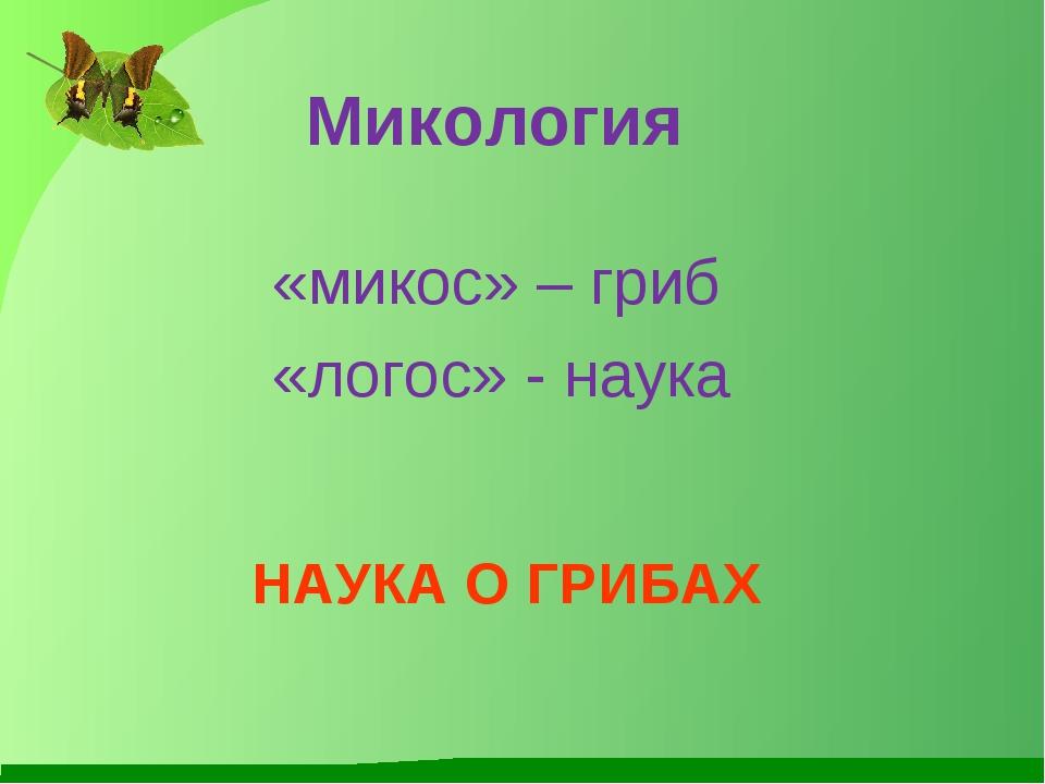 Микология НАУКА О ГРИБАХ «микос» – гриб «логос» - наука