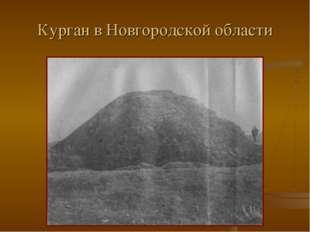 Курган в Новгородской области