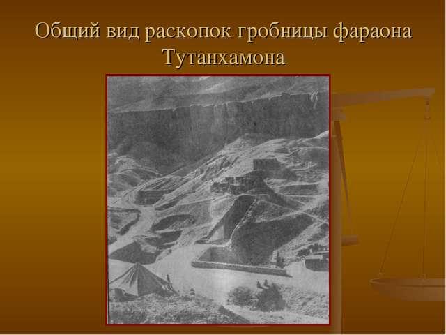 Общий вид раскопок гробницы фараона Тутанхамона