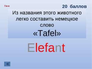 Из названия этого животного легко составить немецкое слово «Tafel» Elefant Ti