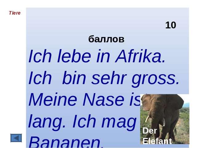 10 баллов Ich lebe in Afrika. Ich bin sehr gross. Meine Nase ist lang. Ich m...