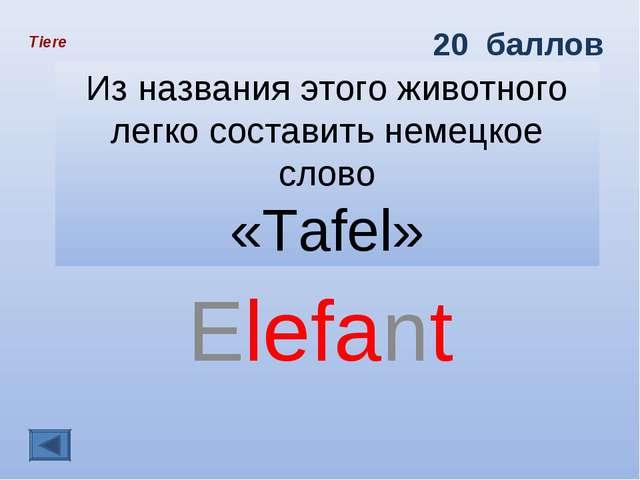 Из названия этого животного легко составить немецкое слово «Tafel» Elefant Ti...