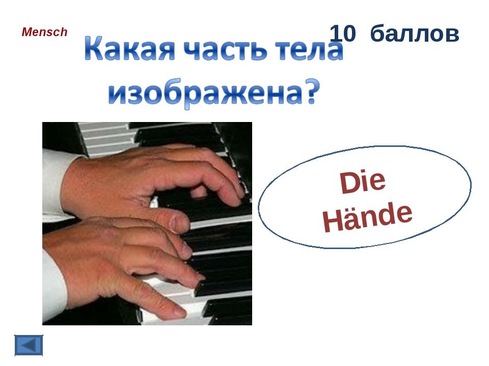 Mensch 10 баллов Die Hände