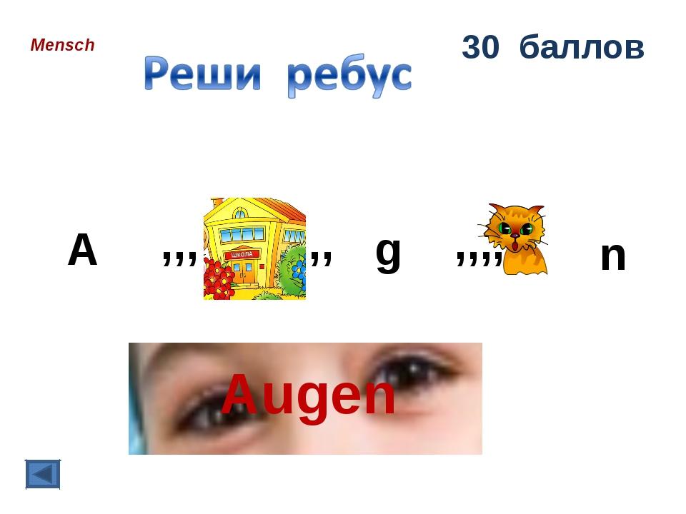 Mensch 30 баллов ,,, ,, A g ,,,, n