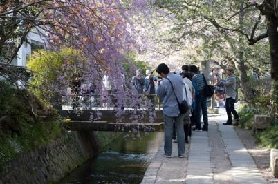http://ic.pics.livejournal.com/psoranet/43529940/202363/original.jpg