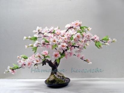 http://cs1.livemaster.ru/foto/large/5da3250992-tsvety-floristika-bonsaj-sakura-rozovaya-n1979.jpg