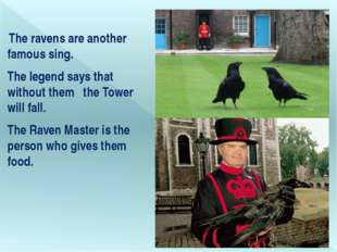 The ravens are another famous sing. The legend says that without them   the