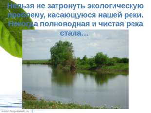 Нельзя не затронуть экологическую проблему, касающуюся нашей реки. Некогда по