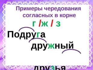Примеры чередования согласных в корне г /ж / з Подруга дружный друзья