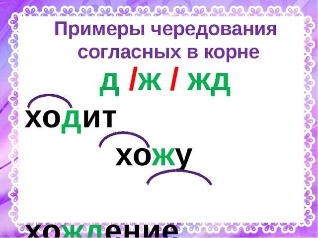 Примеры чередования согласных в корне д /ж / жд ходит хожу хождение