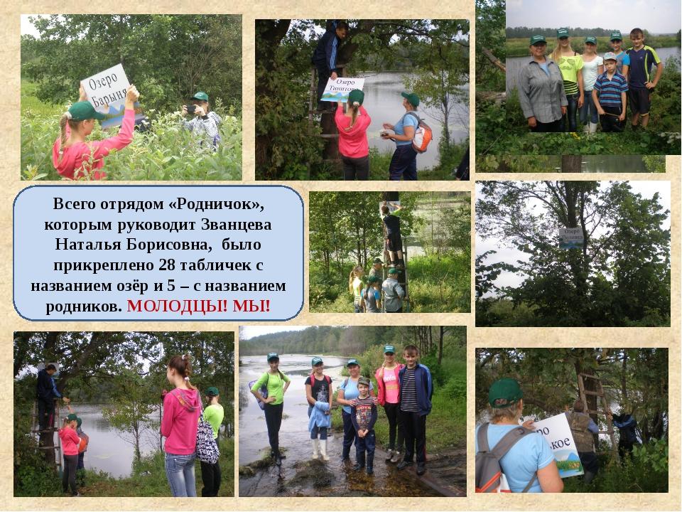 Всего отрядом «Родничок», которым руководит Званцева Наталья Борисовна, было...