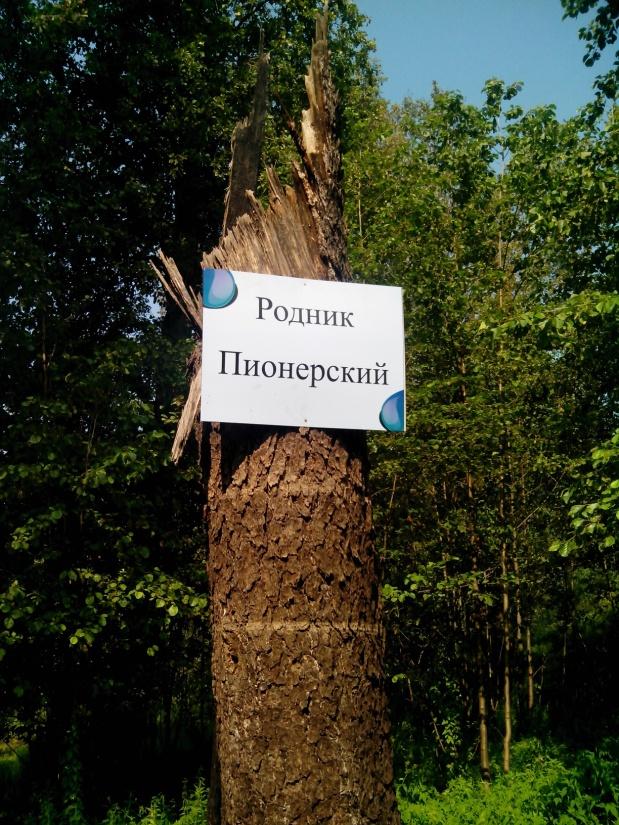 B:\конкурсы 2013 про Озёра\Ксюша Петрушина - про озёра\IMG_20130806_101905.jpg