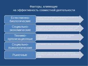 Факторы, влияющие на эффективность совместной деятельности