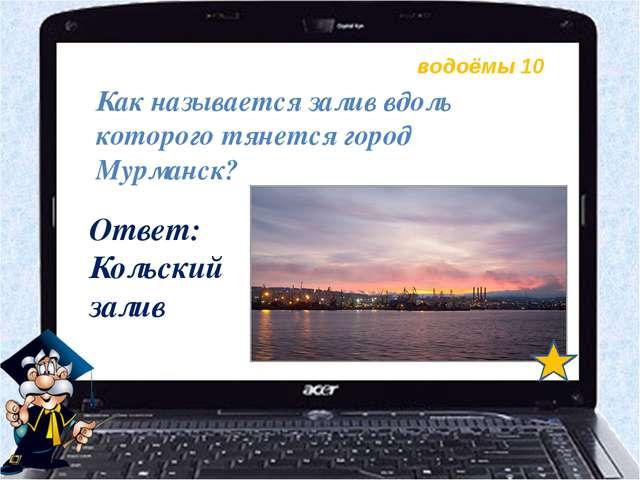 водоёмы 10 Как называется залив вдоль которого тянется город Мурманск? Ответ:...