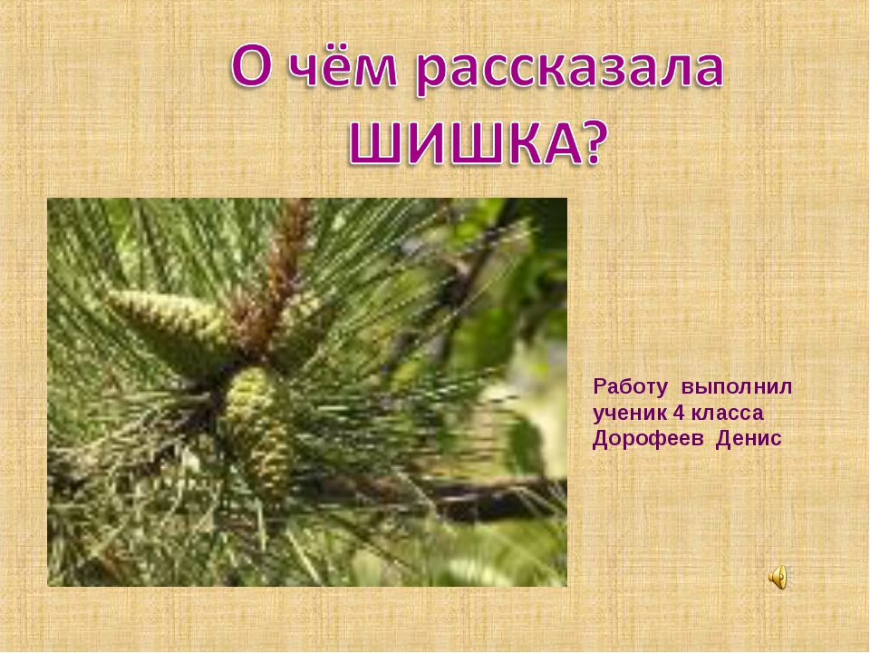 Работу выполнил ученик 4 класса Дорофеев Денис