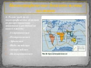 А. Уоллес выделил 6 зоогеографических областей по распространению животных и