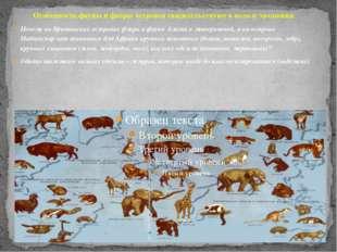 Особенность фауны и флоры островов свидетельствуют в пользу эволюции Почему н
