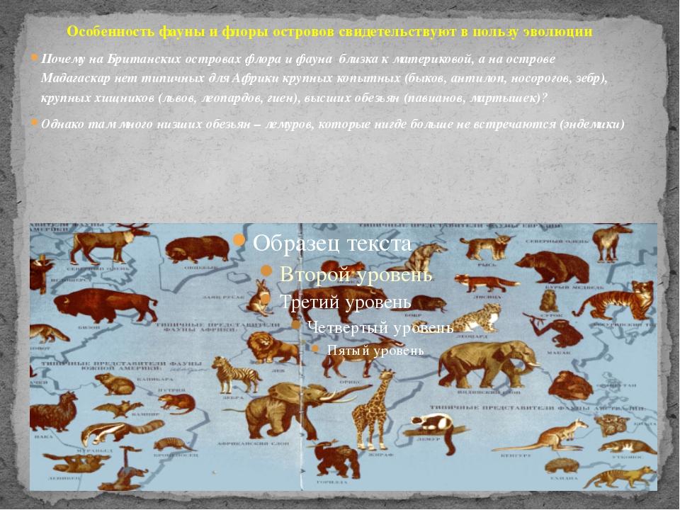 Особенность фауны и флоры островов свидетельствуют в пользу эволюции Почему н...