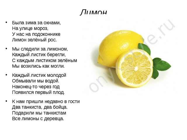 Лимон Была зима за окнами, На улице мороз, У нас на подоконнике Лимон зелёный...