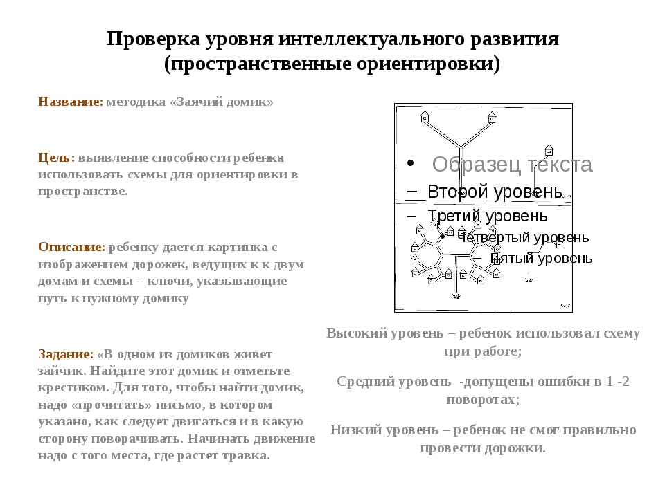 Проверка уровня интеллектуального развития (пространственные ориентировки) На...