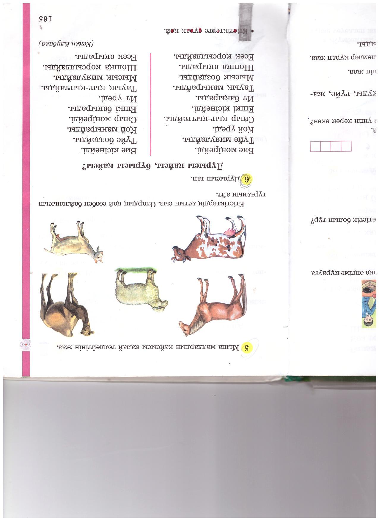 C:\Documents and Settings\User\Мои документы\Мои рисунки\Изображение 116.jpg