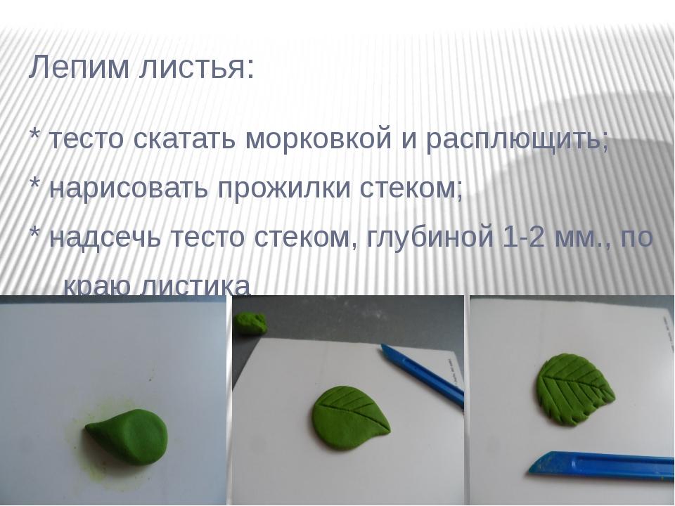 Лепим листья: * тесто скатать морковкой и расплющить; * нарисовать прожилки с...