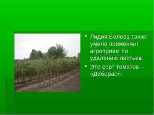 Лидия Белова также умело применяет агроприём по удалению листьев. Это сорт то